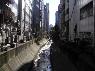 稲荷橋から下流側を見る